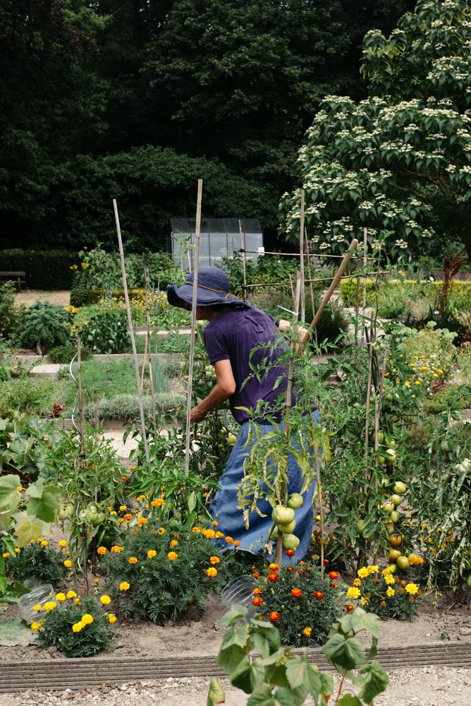 'Pick your garden' editorial by Wilder - the community garden in Braine - l'Alleud