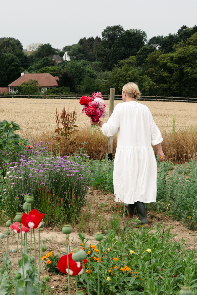 'Pick your garden' editorial by Wilder - the flower field with poppies near Brussels