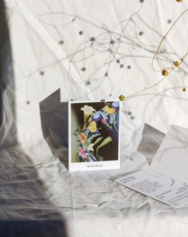 Cadeaubon van Wilder Antwerpen. Bloemen en objecten voor een bedrag naar keuze.