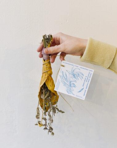 Herbal smudge bundle by Truus Keustermans with card designed by Ines Cox at Wilder Antwerp