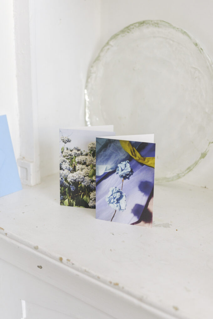 Stationery at Wilder Antwerp - double postcard set blue
