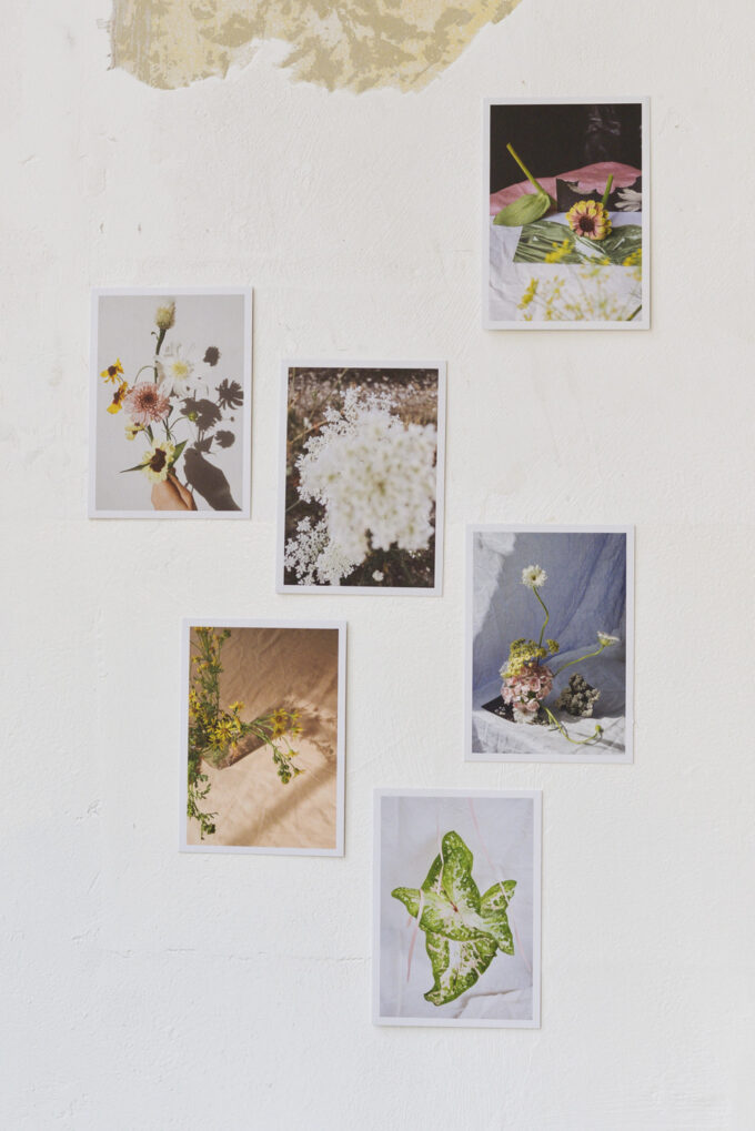 Stationery at Wilder Antwerp - set of 6 single postcards 'snaps'