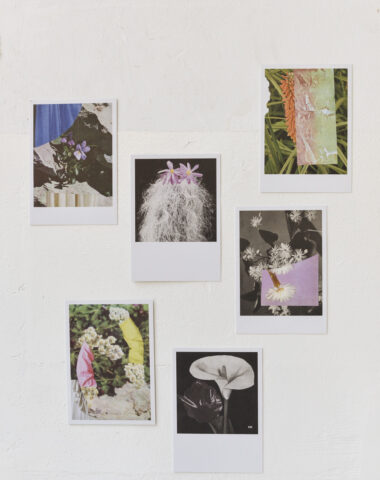 Stationery at Wilder Antwerp - set of 6 single postcards 'collage'