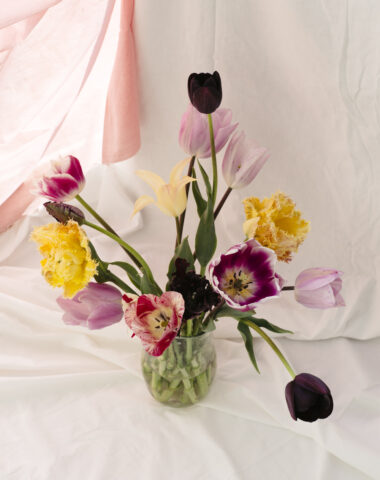 Flower delivery by Wilder Antwerp - Mono bouquet with tulips